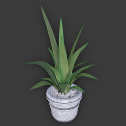 Thumbnail: Simple Plant