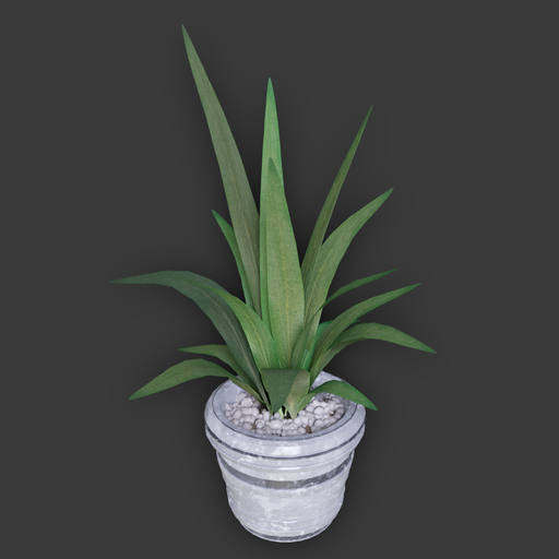Thumbnail: Simple Plant