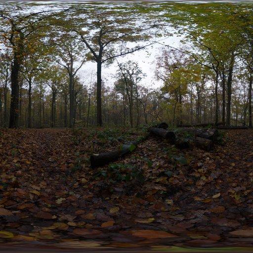 Thumbnail: Autumn Ground