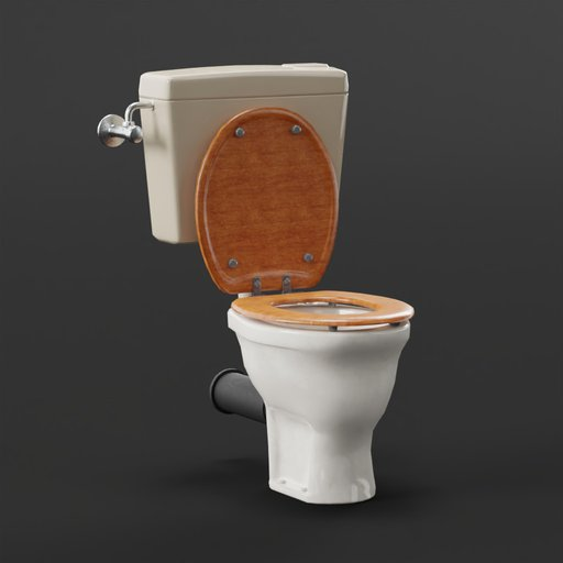 Older toilet