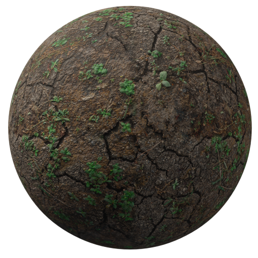 Thumbnail: Dirt ground with cracks and foliage