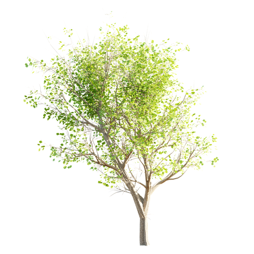 Thumbnail: Tree LOD 1