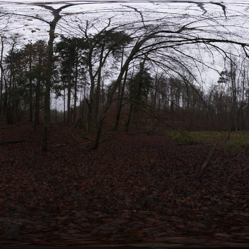 Thumbnail: Muddy Autumn Forest