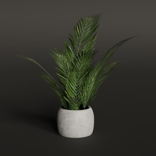 Thumbnail: House Plant