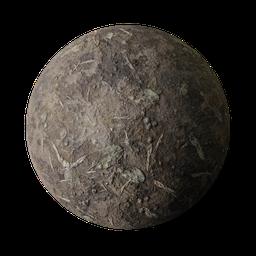Thumbnail: Forest dirt