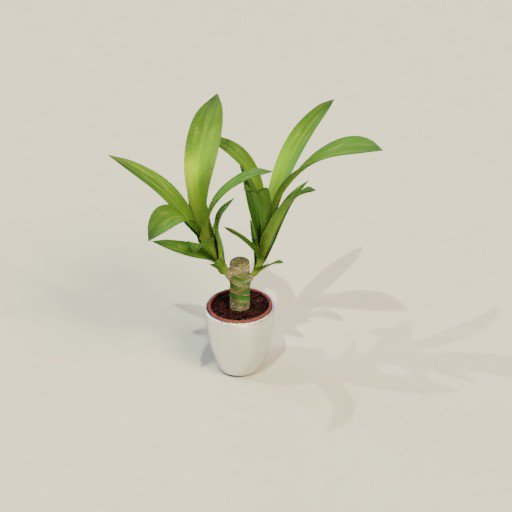 Thumbnail: Indoor plant