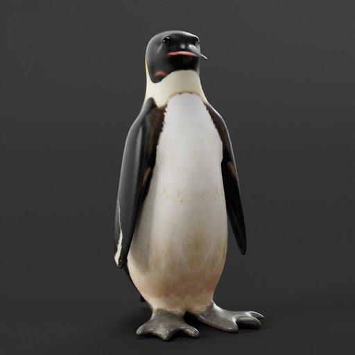 Thumbnail: Penguin