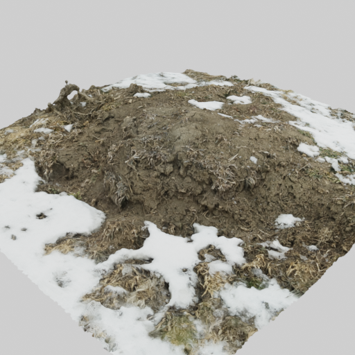 Large Ant Hill with Snow