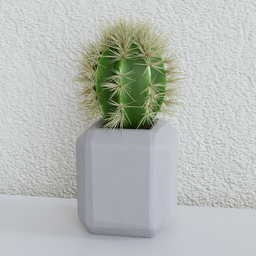 Thumbnail: Potted cactus