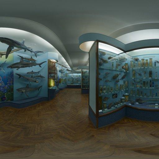 Thumbnail: Hall Of Finfish