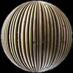 Thumbnail: Bamboo 01