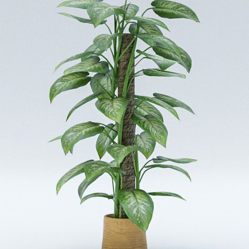 Thumbnail: Plant A