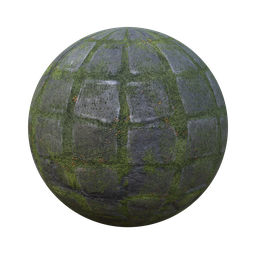 Thumbnail: Mossy paving