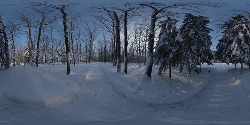 Snowy Forest Path 01