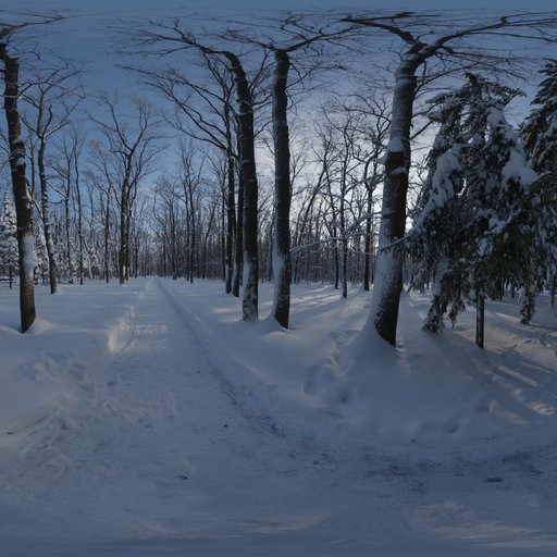 Thumbnail: Snowy Forest Path 01