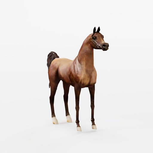 Thumbnail: Arabian Horse Resting Position