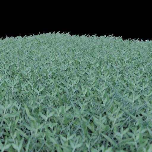 Thumbnail: Grass - 1m area