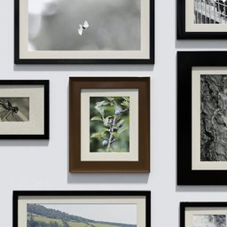 Thumbnail: Photo frame 'anyframe' with  forrest berries