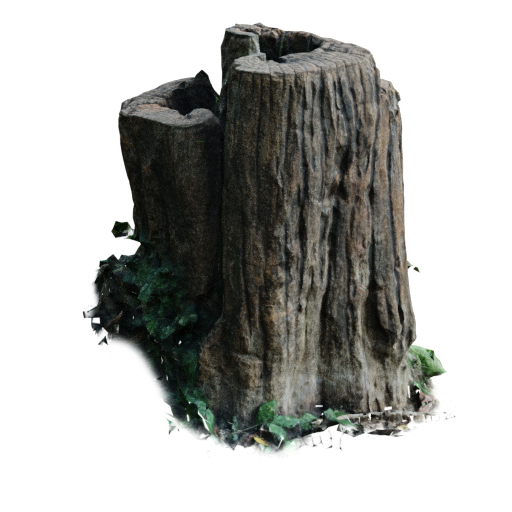 Thumbnail: Aged Wood Trunk