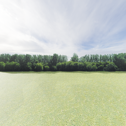 Thumbnail: Greenleaf Treeline Backdrop 001