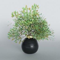 Thumbnail: Plant Vase Serie 01
