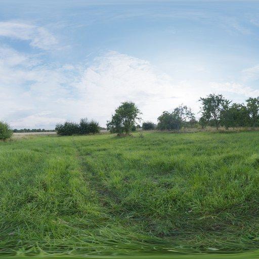 Thumbnail: Evening Meadow