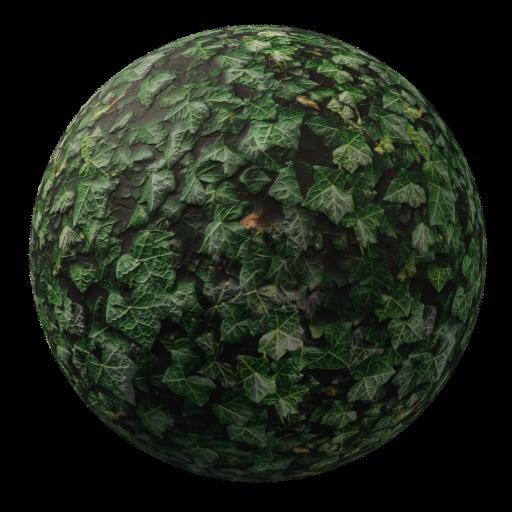 Thumbnail: Ivy dark