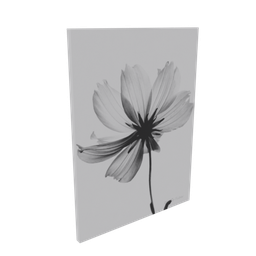 Thumbnail: Translucent flower picture