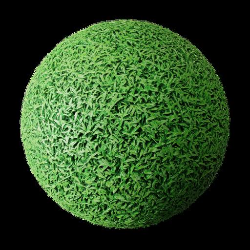 Thumbnail: GreenGrass