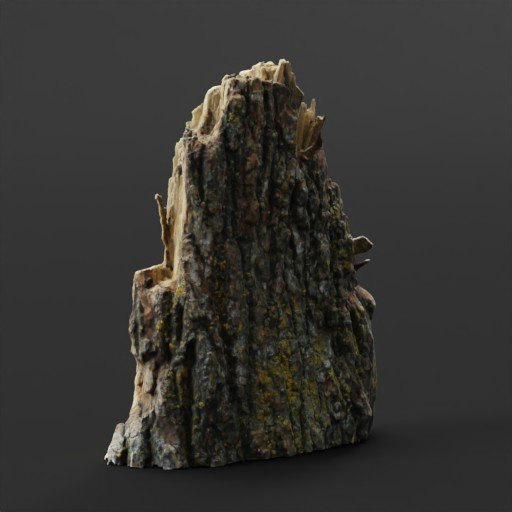 Thumbnail: Section of Tree Bark