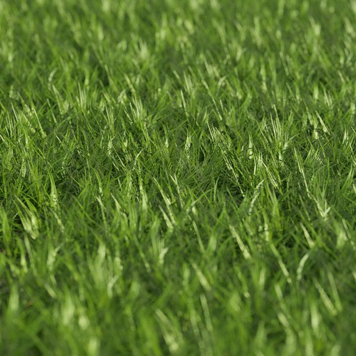 Thumbnail: Grass - Large area
