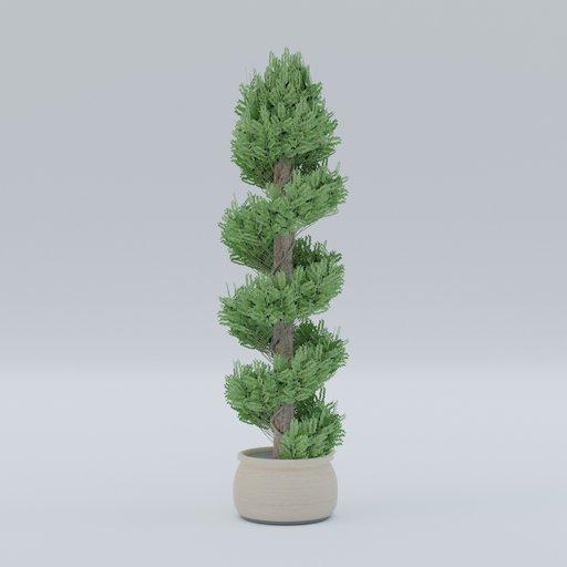 Thumbnail: Plant 10