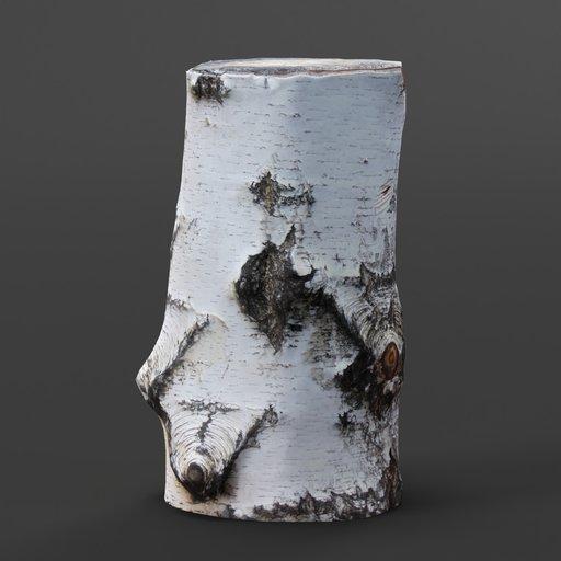 Thumbnail: Wood trunk 01