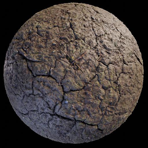 Thumbnail: Soil
