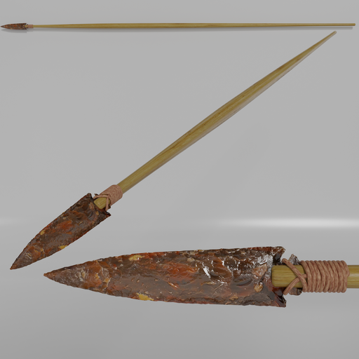 Stone Age hunting spear.