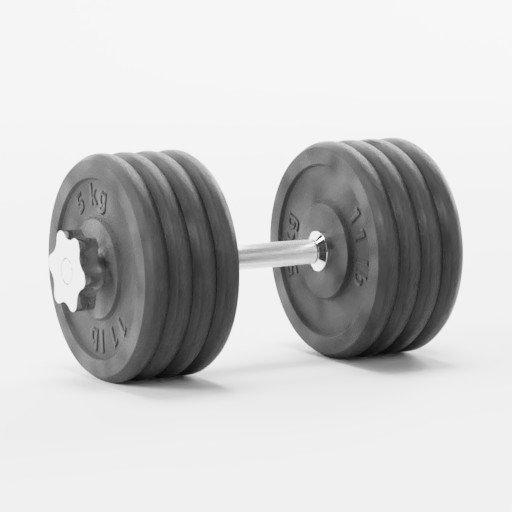 Dumbbell - 42,5 kg