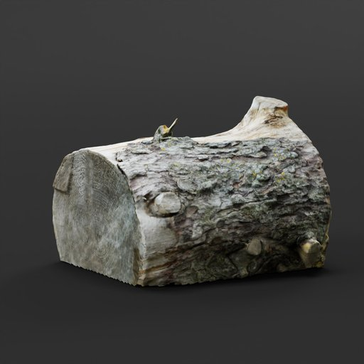 Thumbnail: Photoscanned Pine Tree Log 01