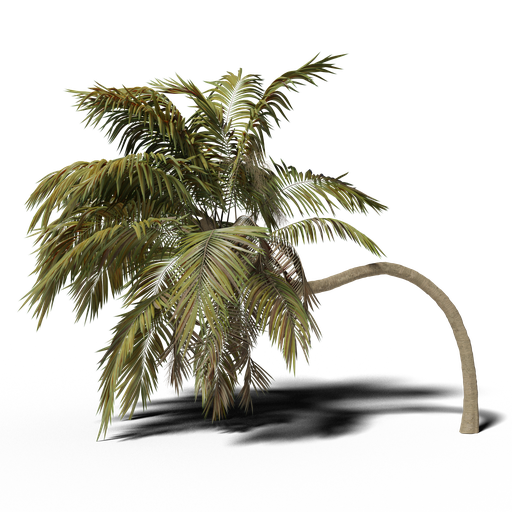 Thumbnail: Bent Palm v1