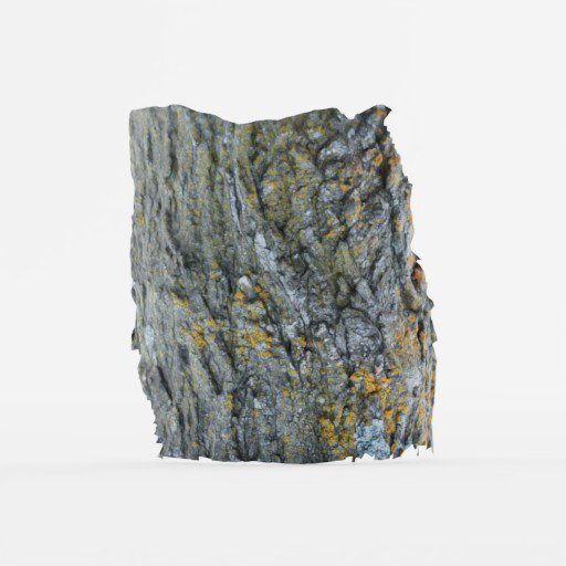 Thumbnail: Section of Bark