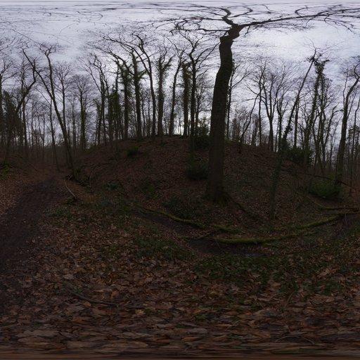 Thumbnail: Autumn Forest 02