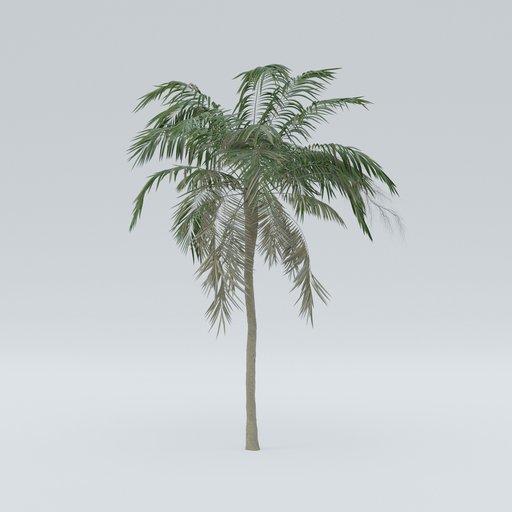 Thumbnail: Palm V4
