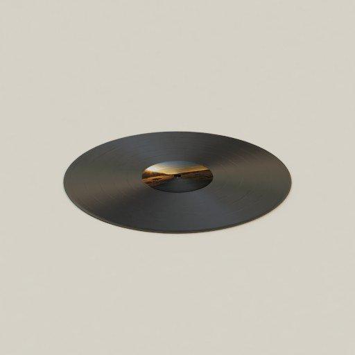 Thumbnail: Vinyl disk