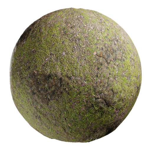 Thumbnail: Mossy rocky ground