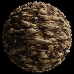 Thumbnail: Ground Leaves