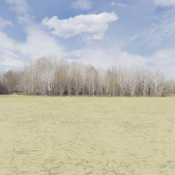 Thumbnail: Treeline of Autumn Backdrop 004