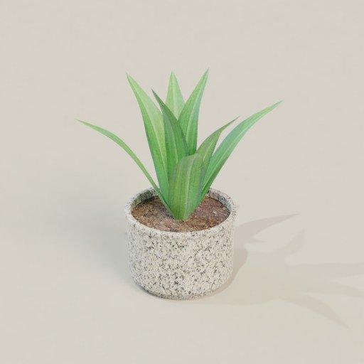 Thumbnail: Plant