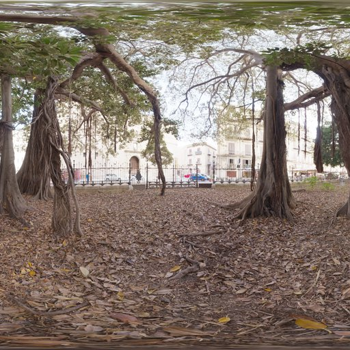 Thumbnail: Old Tree In City Park