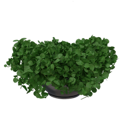 Thumbnail: Decorative vase-03