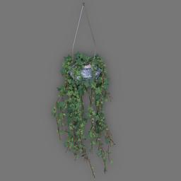 Thumbnail: Hanging Plant