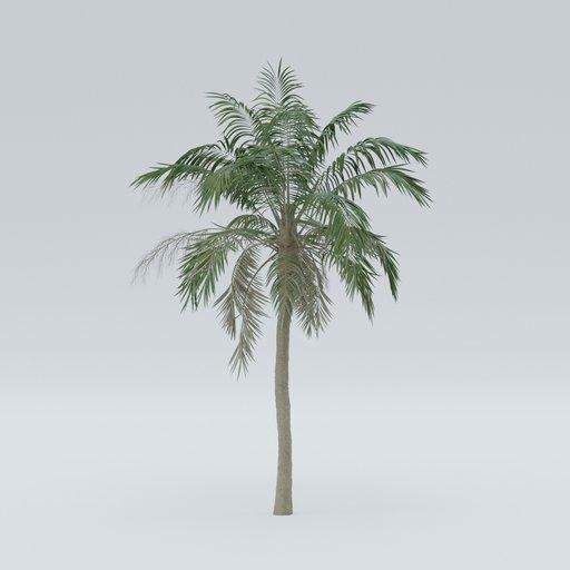 Thumbnail: Palm V3